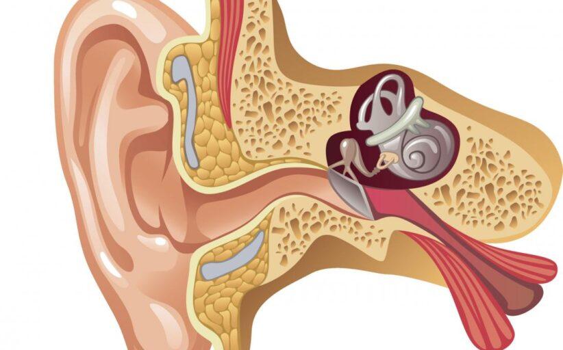 كيس اللمف الباطن في الأذن الداخلية